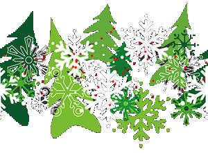 Récolte Sapin Noël - Plantations Univert - Bonsecours - Estrie